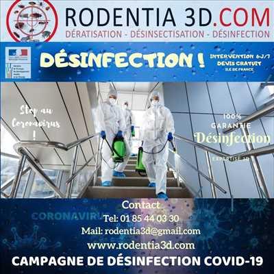 Photo Désinsectisation n°124 zone Val de Marne par RODENTIA SERVICES 3D / RATUAL