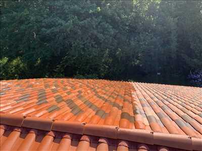 Photo Nettoyage de toiture n°228 zone Pyrénées Atlantiques par Vincent