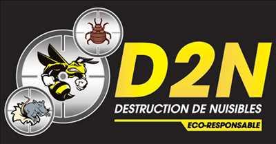 Photo Dératisation n°328 zone Var par Victoric