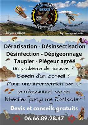 Photo Désinsectisation n°346 à Vénissieux par Groupe d'Intervention Anti-Nuisibles