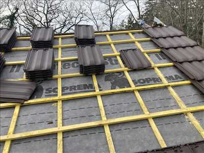 Photo Nettoyage de toiture n°367 dans le département 77 par Lesag
