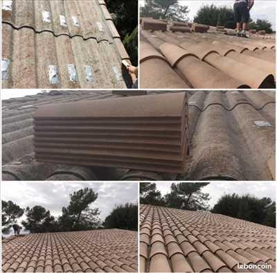 Exemple Nettoyage de toiture n°381 zone Alpes-Maritimes par Sam
