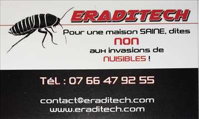Exemple Désinsectisation n°405 zone Gard par Eraditech