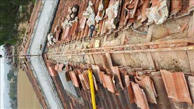 Exemple Traitement des termites n°417 zone Bouches-du-Rhône par Giovanni