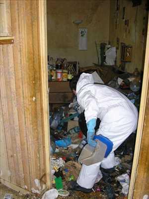Exemple Nettoyage en entreprise n°57 zone Charentes-Maritimes par Christophe